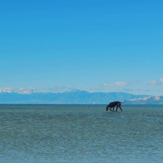 Our First real stop, The Great Salt Lake