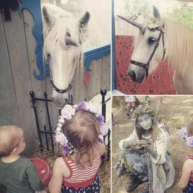 Petting unicorns.
