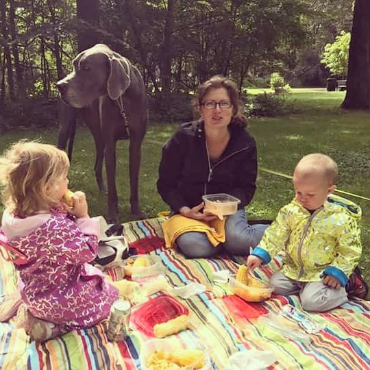 picnics at famous locations all over!