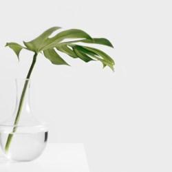 3 dicas para minimalistas de primeira viagem