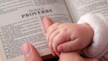 Bible Lesson: Proverbs-The Power of Words