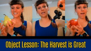 Children's ministry message - the harvest is great