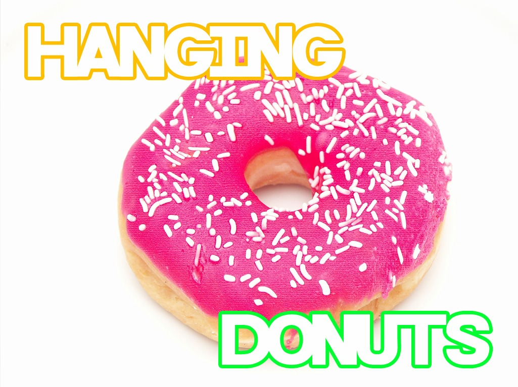 Hanging Donuts