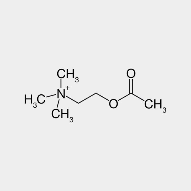 Acetylcholine Molecule