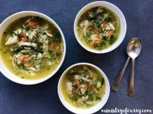 chicken coriander soup