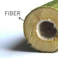 uses and benefits of hemp fiber