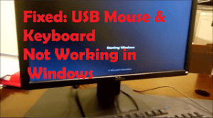 Fixed-USB-keyboard-mouse-not-working-on-windows-startup.png