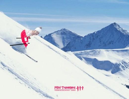 Skking