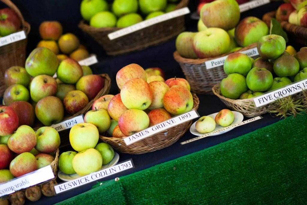 Erddig's Apple Festival