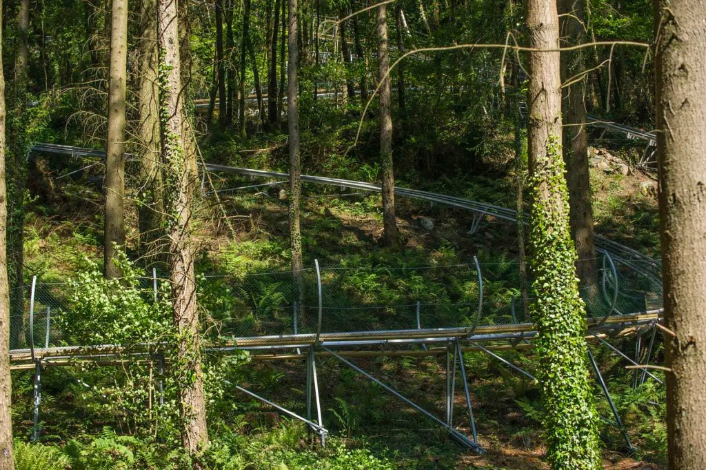 Review: Zip World   Tree Top Nets   Treehoppers   Fforest Coaster