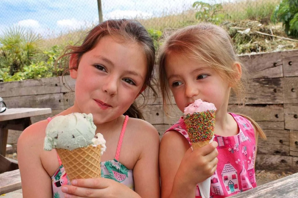 Noah's Ark Zoo Farm Review   Family Fun in Bristol www.minitravellers.co.uk