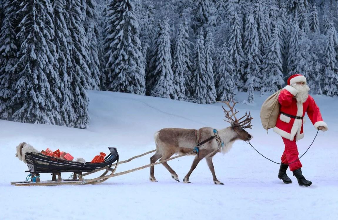 Lapland Santa and Reindeer