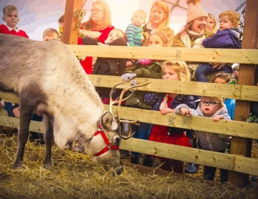Queue-busting tips for visiting Santa at Willow's Farm this Christmas www.minitravellers.co.uk