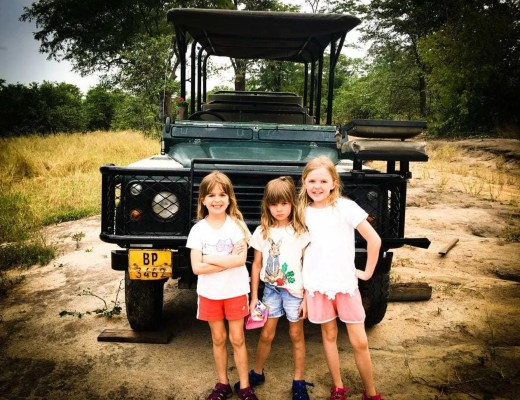 Mvuu Camp in Liwonde National Park  | Best Safari in Africa?