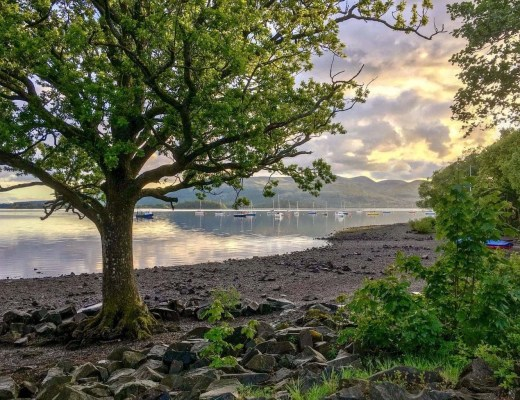 Millarochy Bay Loch Lomond Camping and Caravanning Club Site