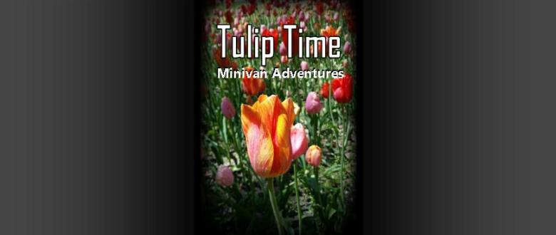 Tulip Time is an annual festival held in Holland, Michigan every May.