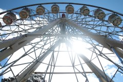 The Ferris Wheel at Floriade