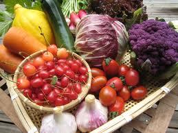 子供に安全な野菜はどこで・・・