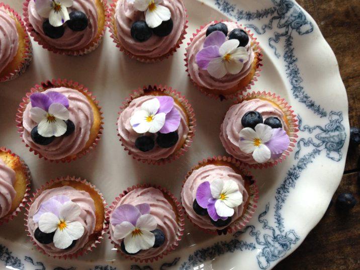 Blåbær muffins