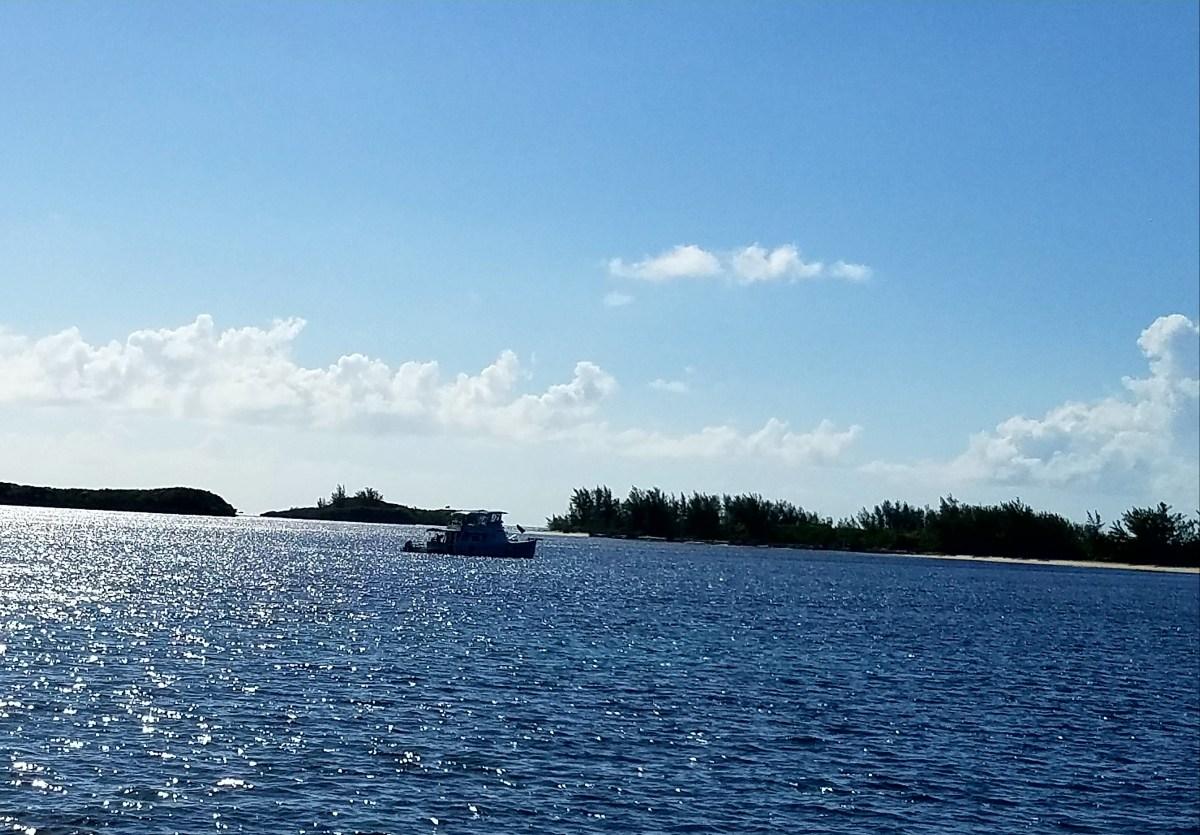 Allan Pensacola Cay