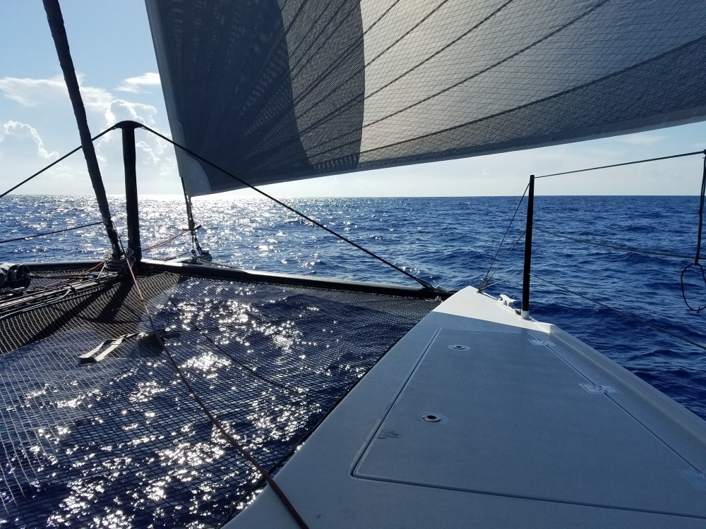 Ocean sailing to savannah