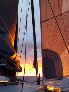 Sunset reflected on the sails