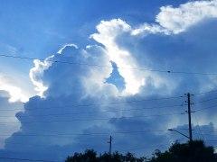 62417 thunderclouds savannah
