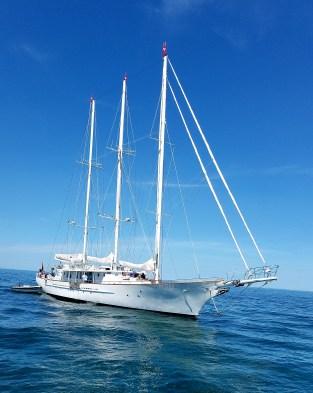 3 masterd Arrabella 157 ft 3 mast sail yacht. Nantucket