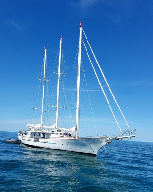 3 masterd Arrabella 157 ft 3 mast sail yacht. Nantucket