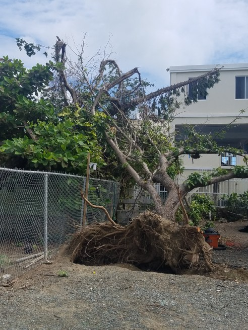 12418 more hurricane damage on st johns
