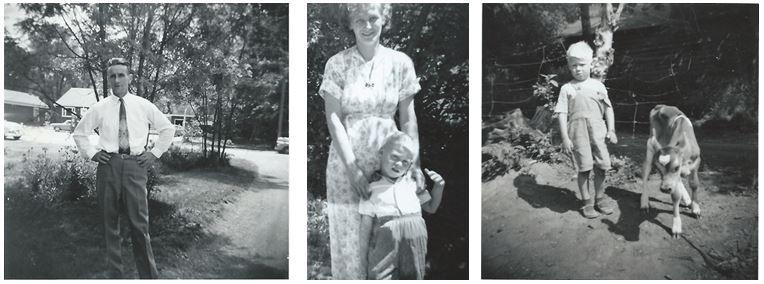 Jan Heeringa (juli 1958), Attje en Gilbert, Gilbert met kalf.