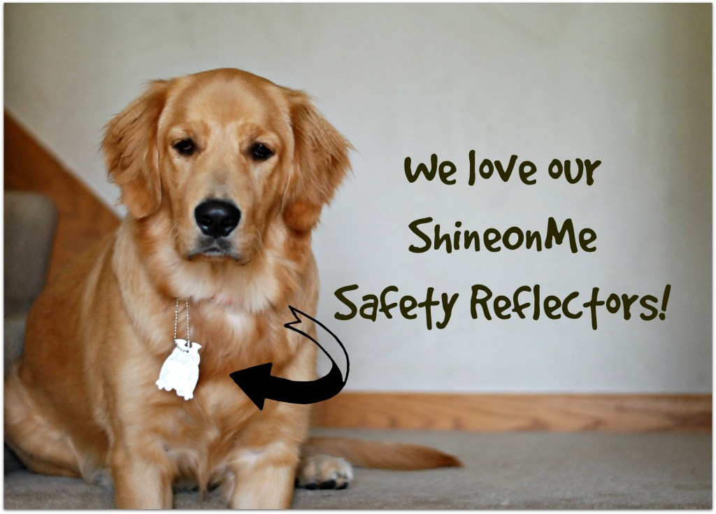 Our New Family Favorite: ShineOnMe Safety Reflectors