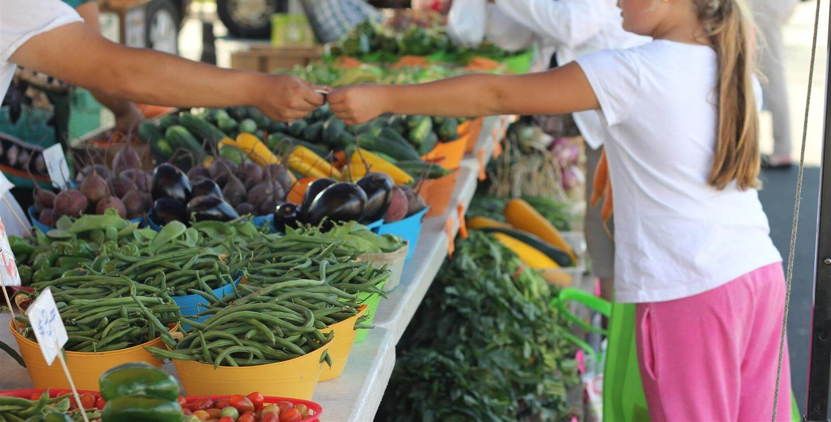 Fresh Online Shopping Farm
