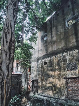 Trong từng đấy ngày ở Hà Nội, thích nhất là chốn này. Mình đang đứng trên chiếc cầu thang gạch cũ nhiều rêu trong hẻm nhỏ 5 Đinh Lễ. Cầu thang dẫn lên một thế giới của sách. Bất ngờ ngẩng đầu nhìn sang, thấy thời gian dừng lại đâu đó ở đây
