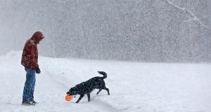 John Fritz plays fetch in the snow with his dog, Lexi, on Tuesday, at Quarry Hill Park in Rochester, Minnesota. It's hard to take a snow day when you're a solo practitioner. AP photo: Rochester Post-Bulletin