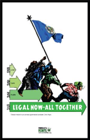 mn flag minn norml