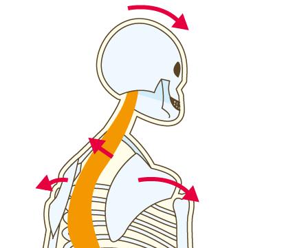 肩関節の動きが悪い