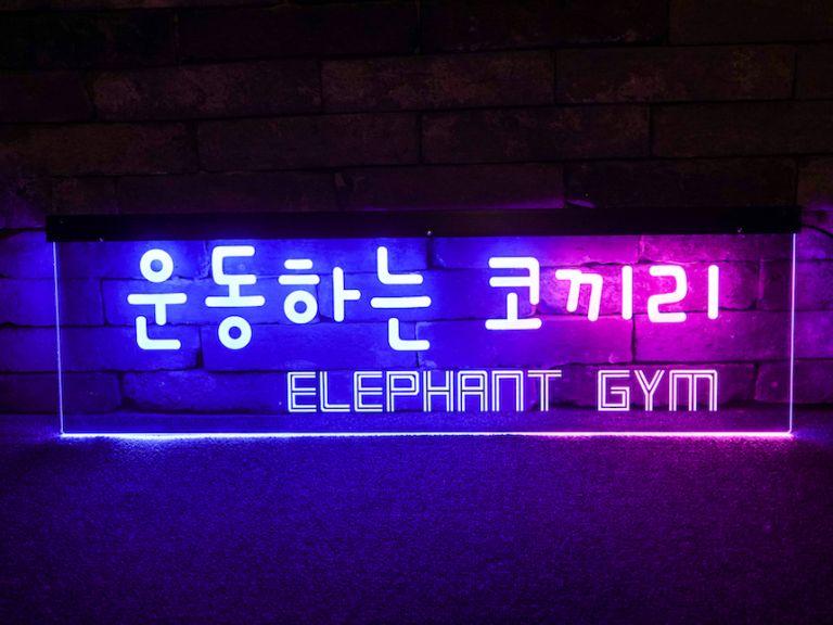 운동하는여자 운동하는코끼리