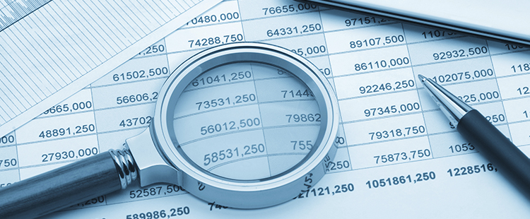 forensic-accounting by MinowCPA