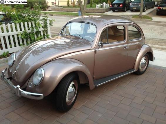 55 Bug fr