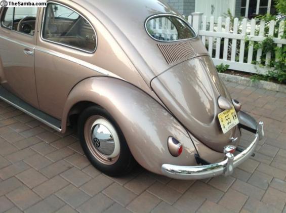 55 Bug re