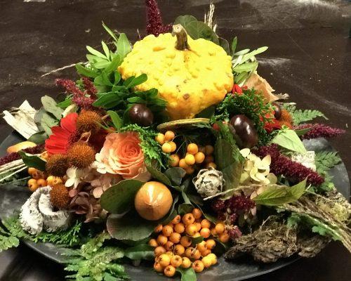mintenmimosa-herfst