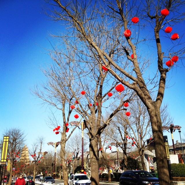 China: Spring Festival (CNY) is on her way.... #prettylanterns #bluesky #Pagoda