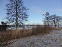 Sörby sjön