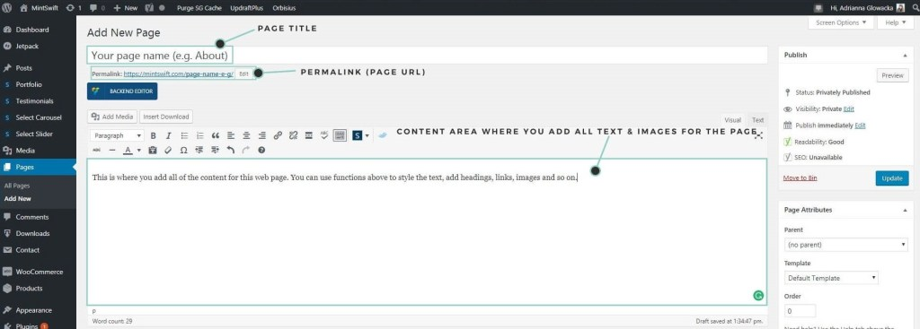 Adding new page to WordPress, title, permalink, content area - MintSwift