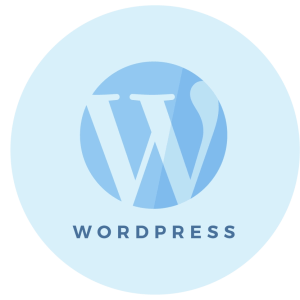Step 9 - WordPress Setup - Brand & Website Design Package Process - MintSwift
