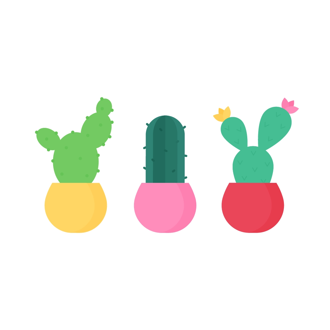 Vector illustration of three cacti in round pots in flat design style