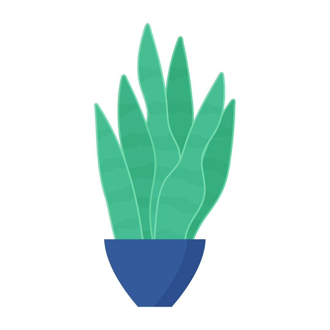 Vector illustration of a Snake Plant - Dracaena Trifasciata in navy blue pot in flat design style