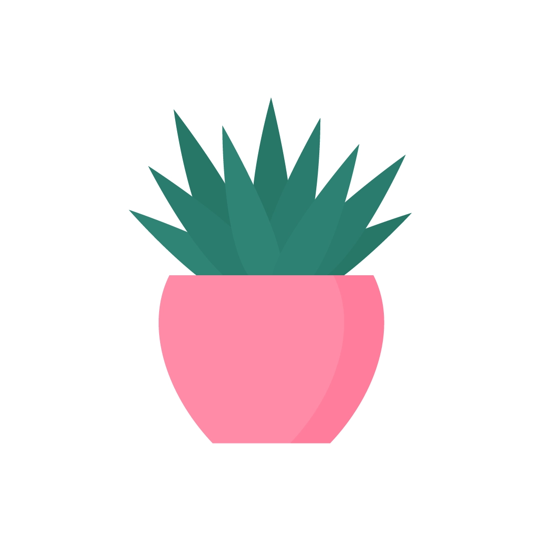 Vector illustration of Agave Shaka Zulu Plant in flat design style