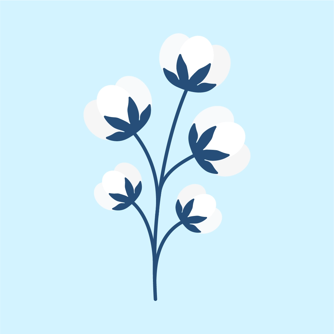 Vector illustration of a cotton branch for my 2nd wedding anniversary (cotton wedding anniversary) in flat design style